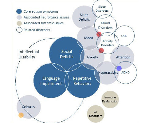 Autism Spectrum Disorders South Africa